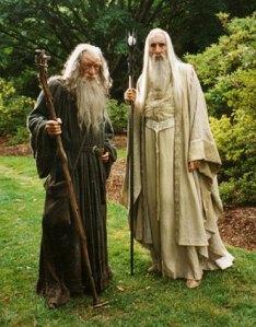 Saruman-and-Gandalf-saruman-20940348-331-424