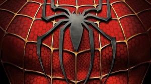 spider-man-spider-man_00245898