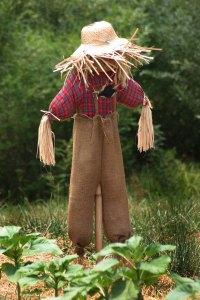 Americana_Scarecrow_(516752575)