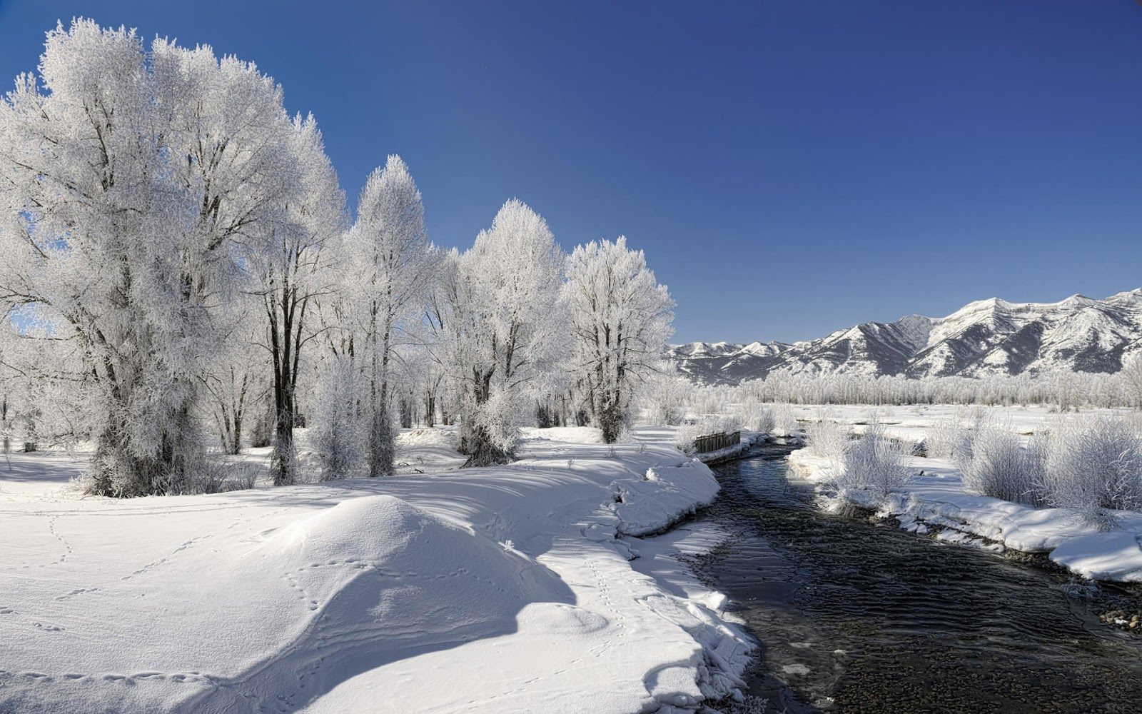 Top Wallpaper Home Screen Winter - winter-2  Perfect Image Reference_46914.jpg