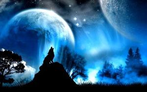 Wolf-fantasy-31454823-1280-800
