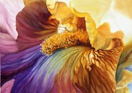 iridescent-iris