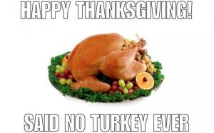 thanksgiving-day-memes_13